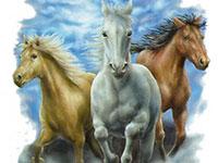Раскраски Тройка лошадей