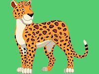 Раскраски Гепард