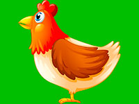 Раскраски Курица