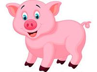 Раскраски Свинья