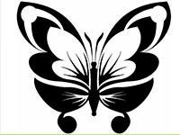 Раскраски Трафарет бабочки