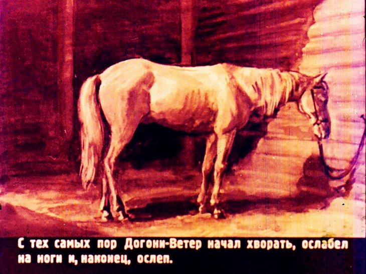 фотограф, слепая лошадь ушинского картинки тётки трусах