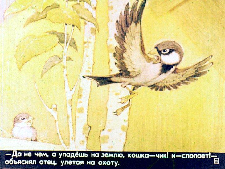 Картинка из сказки воробьишко