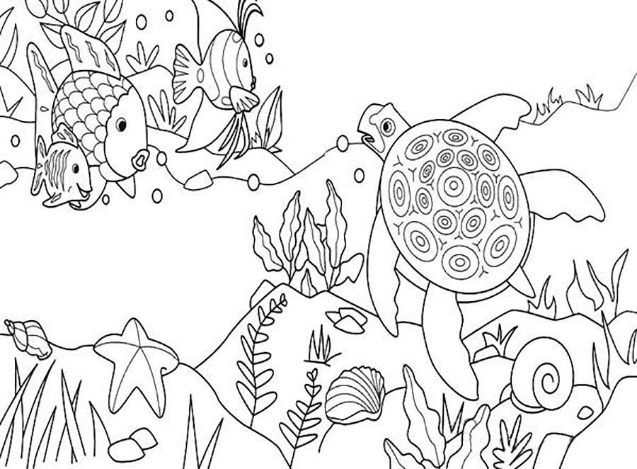 картинки подводный мир рисунки карандашом цена указана