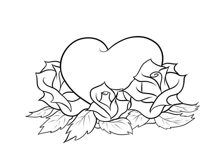 Раскраски Роза цветок скачать и распечатать.