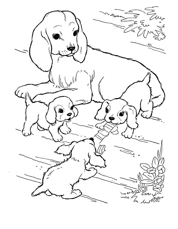 игры раскраски с собаками и щенками