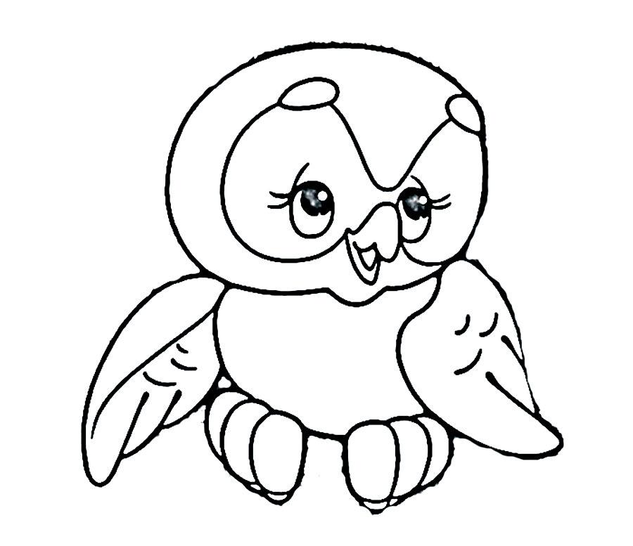 раскраски сова скачать и распечатать