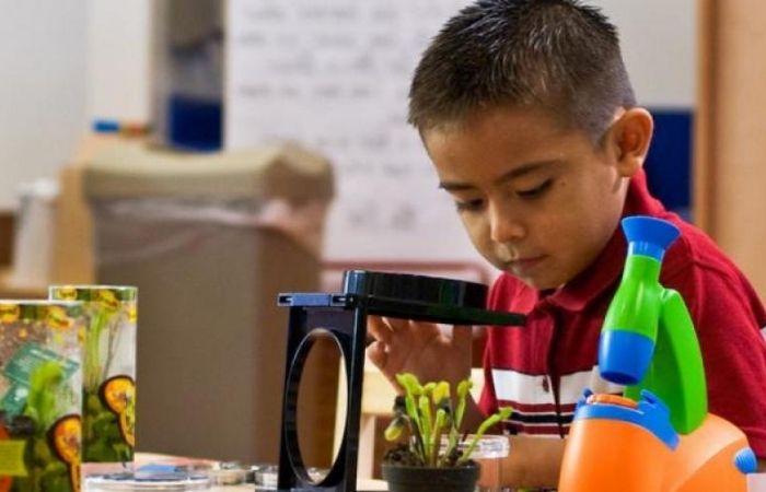 проекты в начальной школе примеры готовые