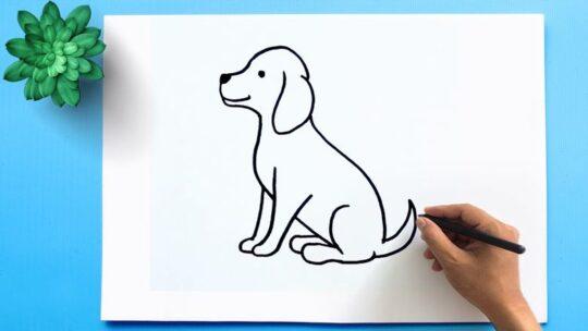 Как нарисовать собаку или щенка-варианты
