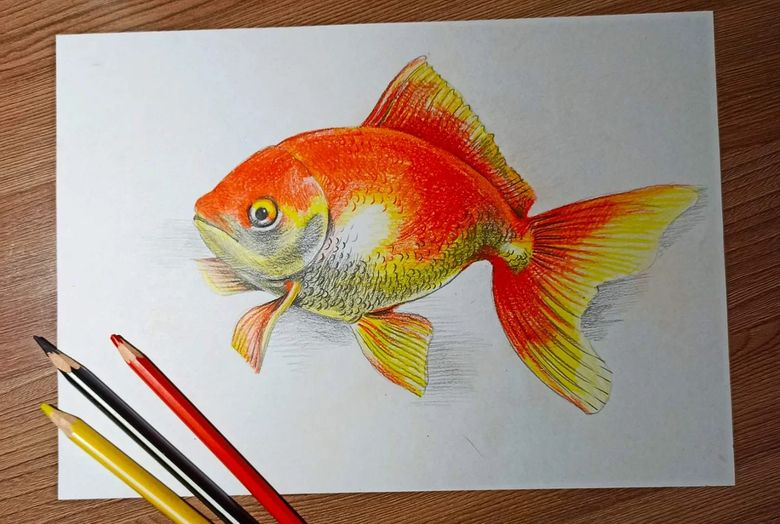 Как нарисовать рыбку поэтапно карандашом: легкие и красивые рисунки для детей и начинающих художников